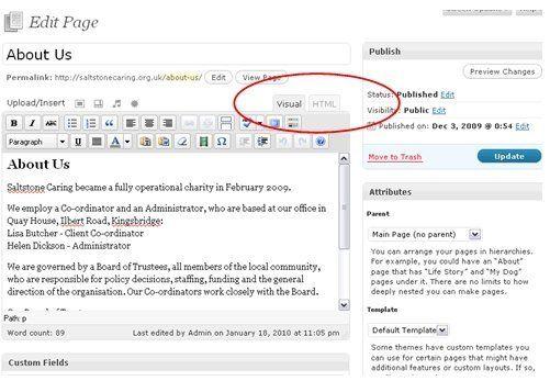 WordPress Edit in Visual Mode