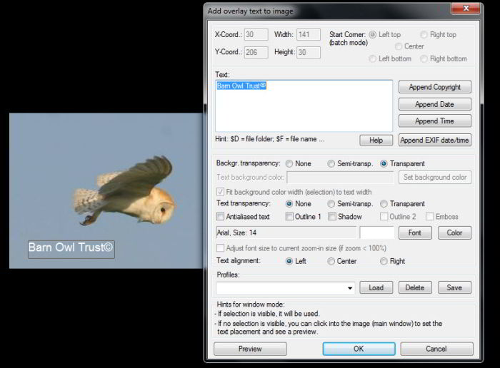 Image editing with Irfanview - Zen Pages